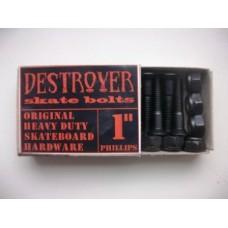 Винты для скейтборда Destroyer skate bolts phillips 1